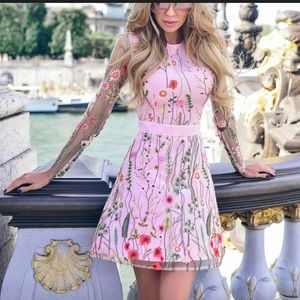 NWT Pink floral lace overlay tulle mini dress slip